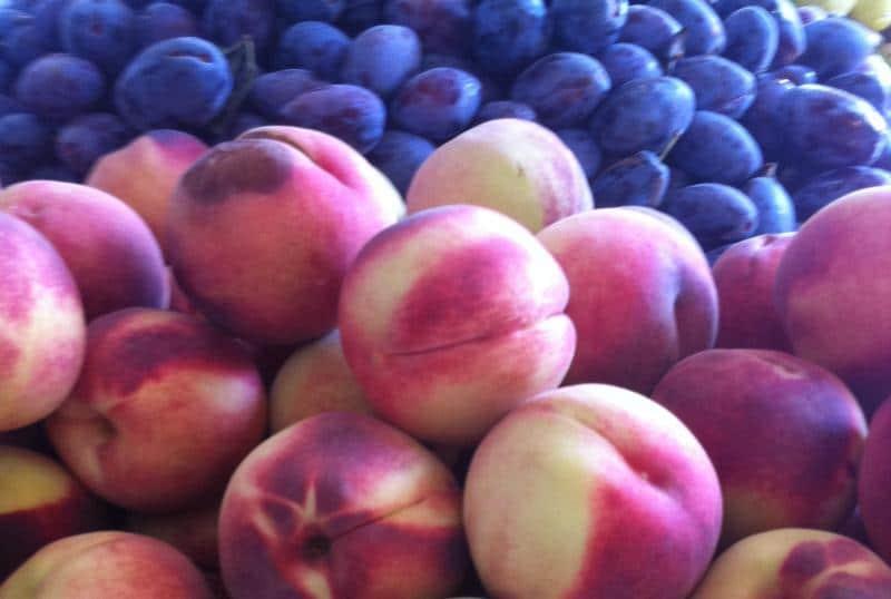 יוזמה: פיקוח ממשלתי על מחירי הירקות והפירות