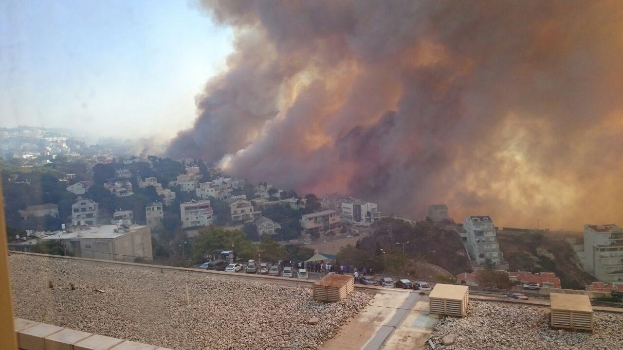 עיריית אשדוד בהתראה: חשש לשריפות ברחבי העיר