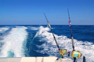 """המשטרה עצרה 2 דייגים שהסתננו לנמל: """"לא רחוק היום וזה יסתיים באסון"""""""
