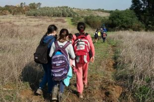 טיול: בלשי הטבע ביער חרובית