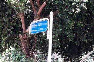 בטקס מיוחד: רחוב חדש נולד באשדוד