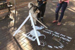 קמפיין עירוני חדש יעודד איסוף צואת כלבים