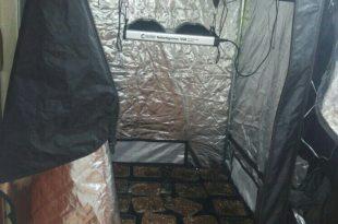 צפו: המשטרה חשפה מעבדת סמים ביחידת דיור ששכר תושב אשדוד