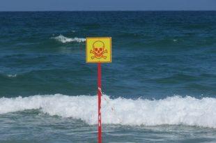 שלט אזהרה ביוף הים