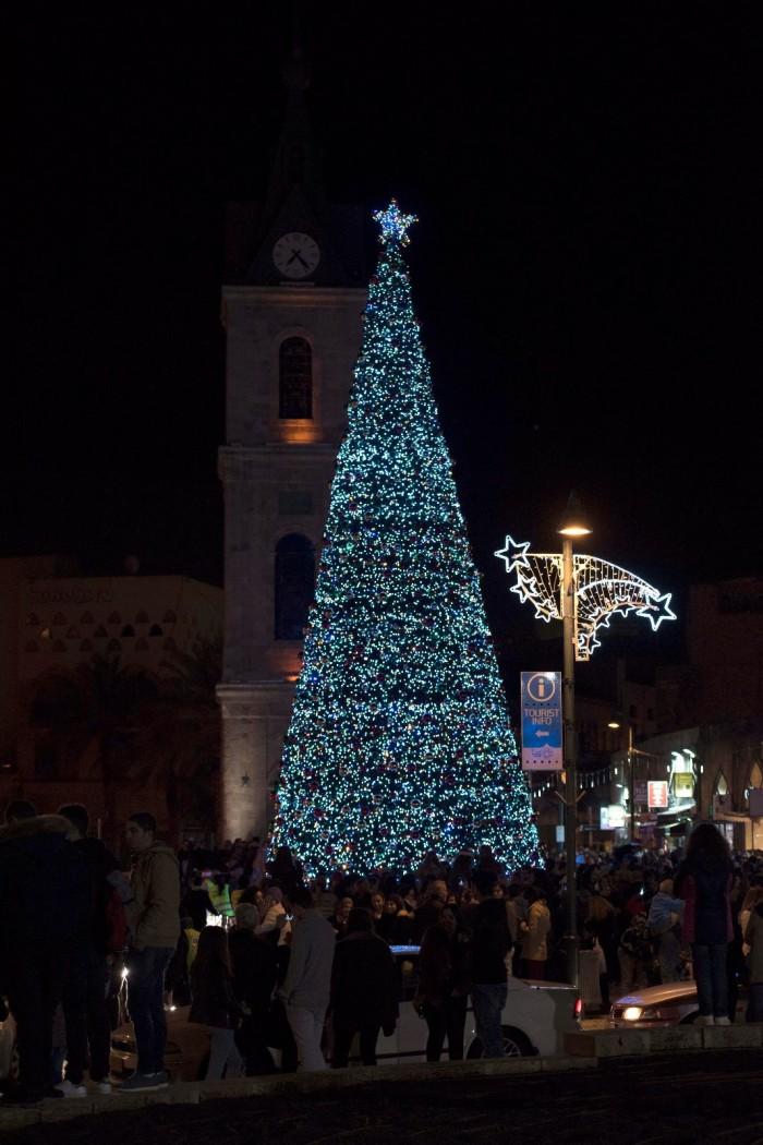 חשיפה: לראשונה בהיסטוריה של אשדוד - עץ אשוח יוצב במרכז קניות