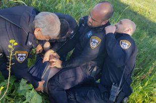 מרדף משטרתי רכוב ורגלי הבוקר בעקבות גנב רכב