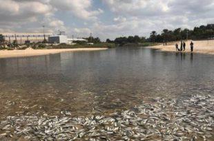 הקרב על הנחל נמשך - באר טוביה: מחכים לדיון להמשך הזרמה ללכיש